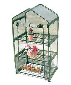 Another great find on #zulily! Three-Shelf Greenhouse #zulilyfinds