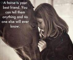 Mooie Afbeeldingen Met Tekst | FOTO]Paarden plaatjes met tekst. • Bokt.nl