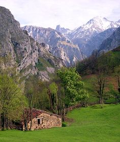 Cabrales - Picos de Europa - Asturias, famous for it's remarkably stinky cheese!