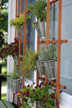 DIY Vertical Garden! Herbs and flowers hang from a trellis.  With daily watering they do great in the well draining pots, plus they provided a beautiful scent and tasty ingredients for your summer cooking!
