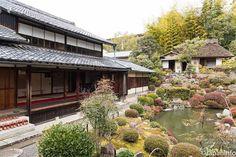 "Japaninfo added 18 new photos to the album: ""Uraku-tsubaki"" คาเมลเลียอายุ 400 ปีกำลังชมได้งาม@วัด Touji-in — at 等持院."