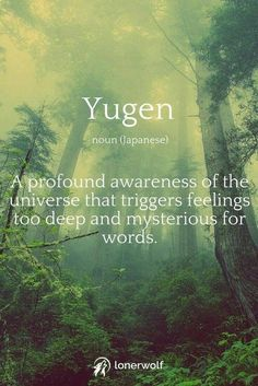 Here's a juicy new word for you! This can often be experienced during mindfulness grounding deep relaxation psychedelics meditation shamanic healing and spiritual nature experiences. Unusual Words, Unique Words, Interesting Words, The Words, Pretty Words, Beautiful Words, Aesthetic Words, Nature Quotes, Nature Words