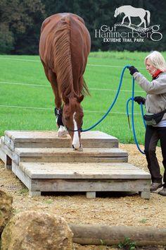 Park & Hindernisse - www. - Park & Hindernisse – www. Horse Training Tips, Horse Tips, Extreme Trail, Cross Country Jumps, Horse Exercises, Horse Games, Horse Treats, Natural Horsemanship, Barrel Horse