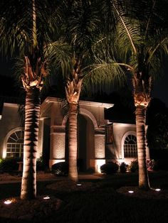 Up lighting on palm trees & What Is Down Lighting: Tips For Down Lighting In Landscapes ... azcodes.com
