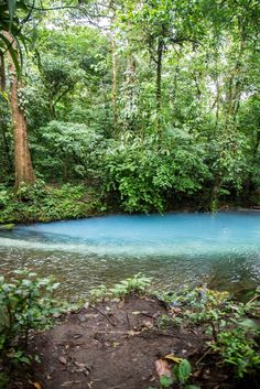 Where two rivers meet to create the sky blue river in Costa Rica. Read our guide to visiting Rio Celeste: http://mytanfeet.com/activities/tips-visiting-rio-celeste/