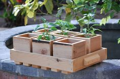 Handmade individual wooden garden pots with wood carrying tray Eco Friendly Herb garden Succulent Planter Wooden flower pot