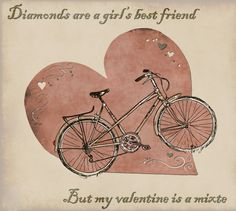 """Diamonds are a girl's best friend. But my valentine is a mixte."""