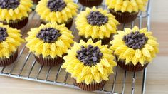 Recipe with video instructions: Much more delicious than an actual bouquet of flowers! Ingredients: Cupcakes:, 1 cup sugar, 1 cup all-purpose flour, ½ cup cocoa powder, 1/3 tbsp baking soda, ½ tsp baking powder, ½ tsp salt, ½ cup buttermilk, room temperature, ¼ cup vegetable oil, ½ cup warm water, 1 large egg, ½ tsp vanilla extract, Buttercream:, 1 cup unsalted butter, room temperature, 1/2 tsp vanilla extract, 2 1/2 cups confectioner's sugar, yellow food coloring...