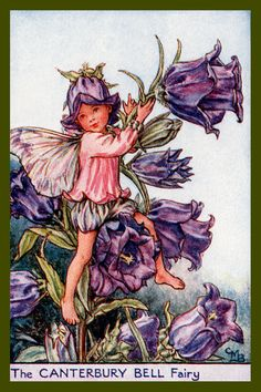 The Canterbury Fairy by Cicely Mary Barker from the 1920s. Quilt Block of vintage fairy image printed on cotton. Ready to sew. Single 4x6 block $4.95. Set of 4 blocks with pattern $17.95.