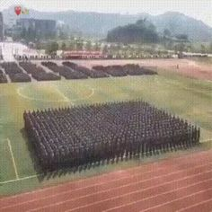 Great coordination (x-post r/interestingasfuck) Funny Facts, Funny Signs, Funny Jokes, Oddly Satisfying Videos, Dump A Day, Gifs, Man Humor, Awesome, Amazing