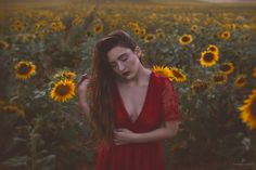 Girasol / Sunflower | by Jesus Solana Poegraphy