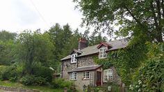 Bliss Cottage in the forest x