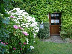 20100628シギエさんの庭7