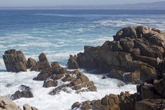 Pacific Grove, Marine Gardens Park, California, USA (Thierry Hoppe) Tags: california usa cliffs coastline pacificgrove blvd oceanviewboulevard marinegardenspark