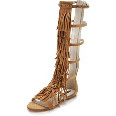 alice + olivia Paula Fringe Gladiator Sandals ($120) ❤ liked on Polyvore featuring shoes, sandals, toffee, leather gladiator sandals, fringe shoes, gladiator sandals, greek sandals and leather sandals