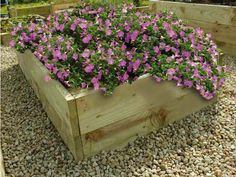 Raised Flower Beds – Raised Timber Gardens For Growing Flowers - Modern Raised Flower Beds, Raised Beds, Pressure Treated Timber, Allotment, Growing Flowers, Garden Planters, Crochet Flowers, Vegetable Garden, Shrubs