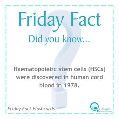 Friday Fact: Haematopoietic stem cells (HSCs) were discovered in human cord blood in 1978. www.Cells4Life.com