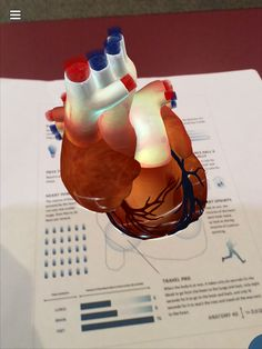 Take a journey inside the human body and heart by downloading #Anatomy4D for FREE! bit.ly/anatomy4dios