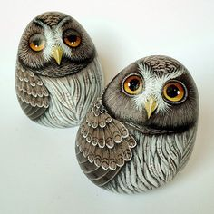 #gufi #owls #painter #paintingstones #pebbleart #handmade #fineart #unique #instagood #instadaily #instalike #animalart #artwork #illustration #drawing #creativity #hobbys #animals #painting #fattoamano #stoneart #rockpainting #tasboyama #pedraspintadas #realart #nature #sassidipinti #stonepaintingrrrtg