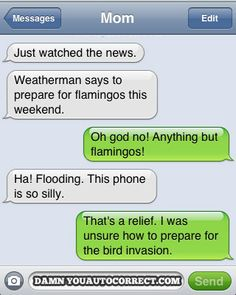Flamingo storms. Very serious. This is so a message that would happen between me and my mom!