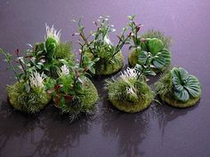Corbania Prime: Scenery tutorial - Making heavy foliage