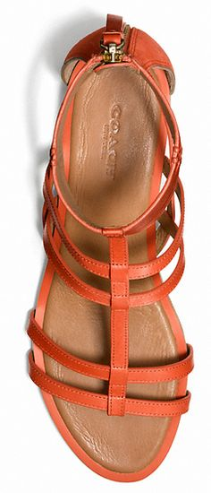Gorgeous strappy sandals 50% off! http://rstyle.me/n/jsf8mnyg6