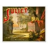 Juliet Chewing Tobacco