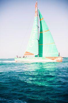 Mint sails