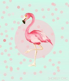 flamingo print- cooler idea