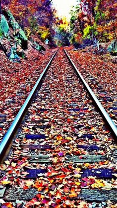 5x7 Area Rugs Fall Train Tracks Source Flickr