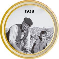 Vinos Ribera del Duero, denominacion origen Ribera del Duero 21st, Wine, Wine Cellars