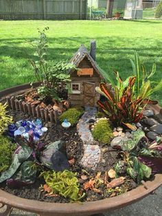 Fairy Garden in one of the fun ways of decorating gardens by using broken pots, wood pieces, planter's soil and other wrecked items. It creates a miniature fantasy garden with the help of unusable items. garten Amazing Fairy Garden Ideas One Should Know Indoor Fairy Gardens, Fairy Garden Plants, Mini Fairy Garden, Fairy Garden Houses, Diy Garden, Gnome Garden, Miniature Fairy Gardens, Succulents Garden, Garden Projects