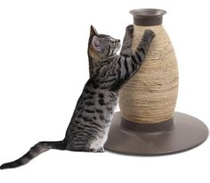 CAT IT Design Home Krabpaal VAAS - P48