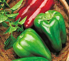 Big Bertha Peppers