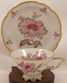 Mitterteich-Bavaria-Germany-Dogwood-Footed-Cup-and-Saucer