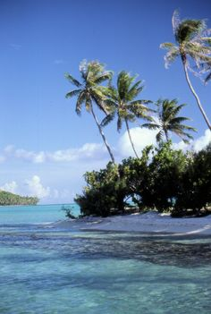 The island of Bora Bora in French Polynesia (Tahiti)