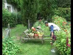 ▶ Jardinage sans travail du sol - YouTube