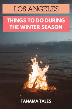 Things to do in Los Angeles during the winter season | California | Los Angeles Snow | Los Angeles Museums | Los Angeles Hiking | Los Angeles Outdoors | Los Angeles Beaches | Los Angeles Cafes and Coffee | Los Angeles Hot Chocolate | Los Angeles Ice Skating | Los Angeles Ramen | Los Angeles Food | Los Angeles Fireplaces | Winter Santa Monica | Winter Venice Beach | Winter Hollywood | Winter Beverly Hills | Southern California Theme Parks | Southern California Mountains and Ski Resorts