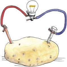 Do you know how to make a potato powered light bulb? Find out how to make a potato powered light bulb in this article from HowStuffWorks. Preschool Science, Science For Kids, Science Activities, Science Party, Potato Light Bulb, Science Electricity, Science Projects For Kids, Easy Science Experiments, Bunt