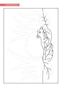 Dzień Jeża – pakiet edukacyjny Rooster, Moose Art, Animals, Animales, Animaux, Animal, Animais, Chicken