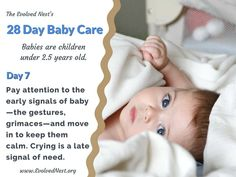 """What Does A Baby Need? There is a lot of misinformation about babies and their needs, and parents are often encouraged to ignore baby's signals. Bad idea. Babies are """"half-baked"""" at birth and have much to learn with the help of physical and emotional support from caregivers. Taking care of baby's needs is an investment that pays off with a happier, healthier child and adult. Here are 28 days of reminders about babies and their needs. Visit the www.EvolvedNest.org for more on becoming nested! Taking Care Of Baby, 28 Days, Baby Needs, 5 Year Olds, Caregiver, Healthy Kids, Baby Care, The Help, Nest"""
