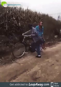 Humor Discover funny gif -Funny Pictures to Send or Share via Whatsapp Stupid People Funny People Funny Videos Funny Photos Best Funny Pictures Funny Jokes Hilarious Fail Video Gif Animé Stupid People, Funny People, Funny Videos, Beste Gif, Funny Jokes, Hilarious, Fail Video, Funny Clips, Man Humor