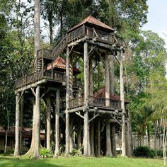 Awesome Treehouse Masters Design Ideas that will Make You Dream to Have It - DecOMG Beautiful Tree Houses, Cool Tree Houses, Silo House, My House, Treehouse Masters, Tree House Designs, Tree Tops, In The Tree, House In The Woods