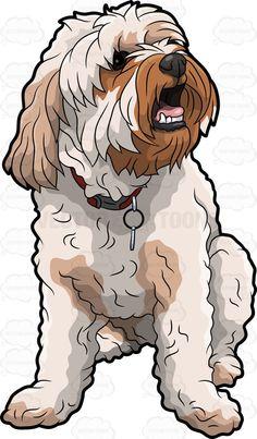 An adorable shaggy dog Cartoon Dog, Cartoon Drawings, Animal Drawings, Poodle, Cute Dog Drawing, Dog Outline, Dog Tumblr, Silky Terrier, Dog Vector