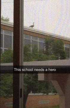 """""""Some kid at my high school sent out the snap chat of the year."""""""