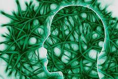 Η νόσος του Πάρκινσον και τα βακτήρια του εντέρου http://ift.tt/2haDSE9