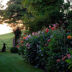 Affordable And Effective Cottage Garden Designing Methods For Your Home Your home is your world, and much like the world around us, looks are important. You may take your time to care for your house, but what about your yard? Garden Cottage, Home And Garden, The Secret Garden, Home Decoracion, Nature Aesthetic, Of Wallpaper, Dream Garden, Country Living, Garden Inspiration