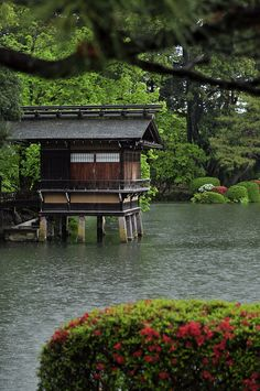 ☮ Japanese garden I prefer all the oriental gardens to those I see in America.  These gardens are absolutely breathtaking and beautifully kept!
