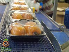 Linea di confezionamento kaki a polpa morbida, 4 frutti in PET. #kakidivano #soledautunno #kaki Info: www.divanosrl.it