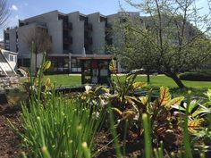 Parkhotel Brunauer: Das moderne Seminarhotel in Salzburg Mansions, House Styles, Plants, Home Decor, Recovery, Landscape, Vacation, Lawn And Garden, Decoration Home